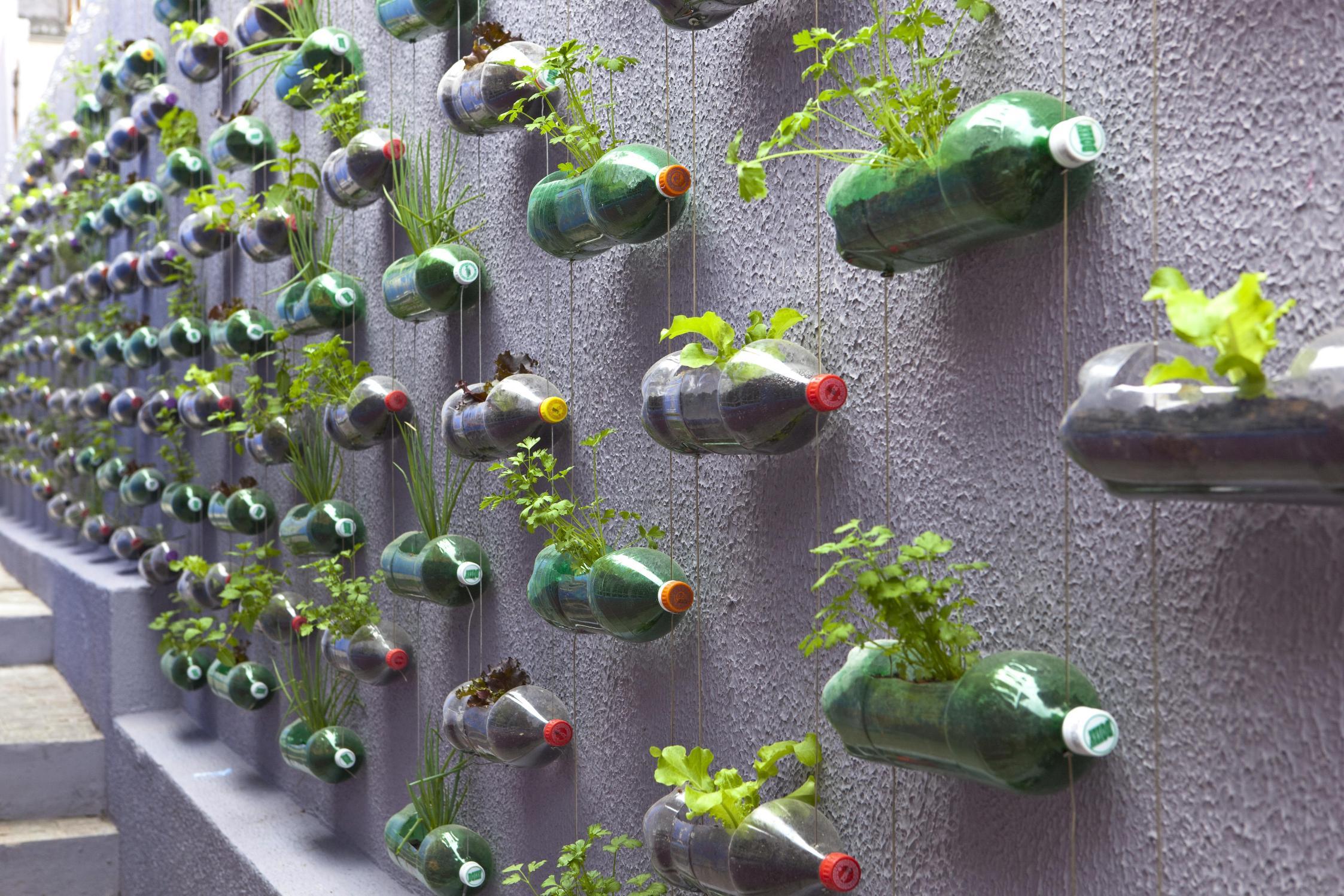jardim vertical em garrafas pet